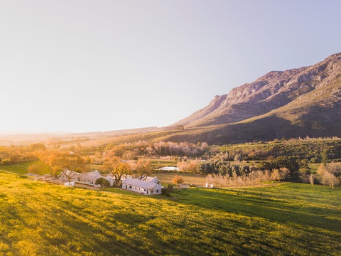Holidays on a working wine farm in Stellenbosch